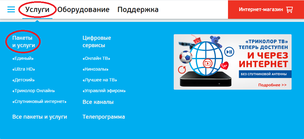 Спутниковые каналы для взрослых через интернет онлайн — img 6